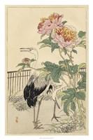 Crane and Peony Fine Art Print