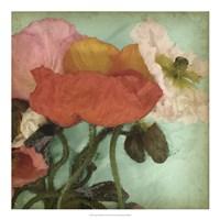 Aquatic Poppies II Framed Print
