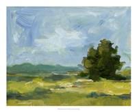 Field Color Study II Framed Print