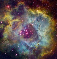 Rosette nebula (NGC 2244) in Monoceros by Filipe Alves - various sizes