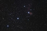 Orion's Belt, Horsehead Nebula and Flame Nebula by Luis Argerich - various sizes