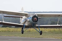 An Antonov An-2 taking off from an airfield in Bulgaria Fine Art Print