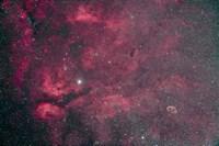 Gamma Cygni nebulosity complex with the Crescent Nebula Fine Art Print