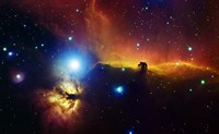 Alnitak region in Orion with Flame Nebula (NGC 2024), and Horsehead Nebula Fine Art Print