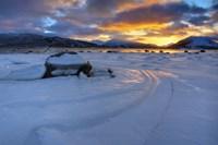 A winter sunset over Tjeldsundet at Evenskjer, Troms County, Norway Fine Art Print