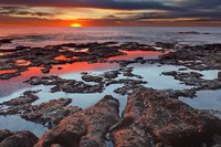 Tidal pools reflect the sunrise colors during the autumn equinox Fine Art Print