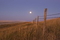 Harvest Moon down the road, Gleichen, Alberta, Canada by Alan Dyer - various sizes