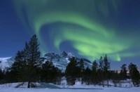 Aurora Borealis over Nova Mountain Wilderness, Troms, Norway Fine Art Print