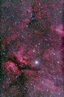 Sadr region of Cygnus around Gamma Cygni by Alan Dyer - various sizes