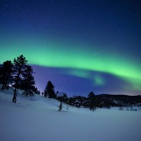 Aurora Borealis and a shooting star in the woods of Troms County, Norway Fine Art Print