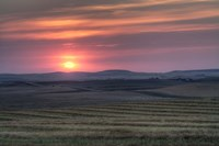Setting sun over harvested field, Gleichen, Alberta, Canada by Alan Dyer - various sizes