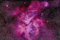 The Carina Nebula in the southern sky by Alan Dyer - various sizes - $47.49