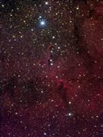 Elephant's trunk nebula inside IC 1396 by Filipe Alves - various sizes