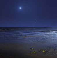 Venus shines brightly below the crescent Moon from coast of Buenos Aires, Argentina Framed Print