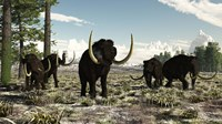 Woolly Mammoths in the prehistoric northern hemisphere Fine Art Print