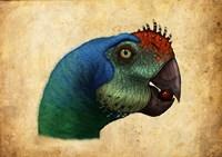 Oviraptor head detail Fine Art Print