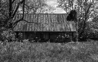 Abandoned Log Home - various sizes - $36.49