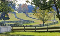 Stacked Split-Rail Fences in Appomattox, Virginia - various sizes