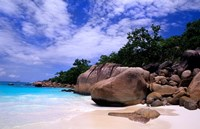 Beach, La Digue in the Seychelle Islands by Bill Bachmann - various sizes