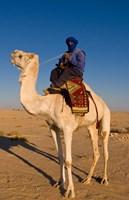 Bedouin man on camel, Douz, Sahara Tunisia, Africa by Bill Bachmann - various sizes