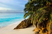 Ansi Victorin Beach, Seychelles by Alison Wright - various sizes - $40.99