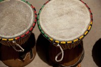 Gambia, Banju, Wooden drums, musical instrument Fine Art Print
