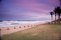 Beaches at Ansteys Beach, Durban, South Africa Fine Art Print