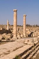 Ancient Architecture, Sabratha Roman site, Libya Fine Art Print