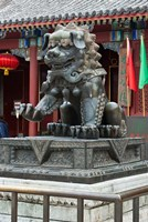 China, Beijing. Bronze lion sculpture, Fragrant Hill Fine Art Print