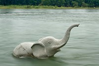 Elephant statue in Li River, Elephant Trunk Hill Park, Guilin, China by Adam Jones - various sizes