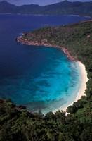 Aerial View of Tropical Beach, Seychelles Fine Art Print