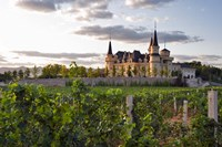 Chateau Changyu AFIP Global winery, Ju Gezhuang Town, China by Janis Miglavs - various sizes