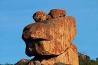 Frog-shaped rock, Big Cave Camp, Matopos Hills, Zimbabwe, Africa by David Wall - various sizes