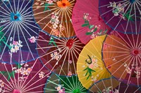 Colorful Silk Umbrellas, China Fine Art Print