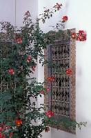 Courtyard with Zellij (Mosaic Tilework), Marrakech, Morocco Fine Art Print