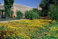 Gardens and Crenellated Walls of Kasbah des Oudaias, Morocco Fine Art Print