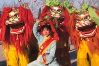 Girl Playing Lion Dance for Chinese New Year, Beijing, China Fine Art Print