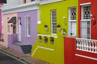 Colorful houses, Bo-Kaap, Cape Town, South Africa by David Wall - various sizes