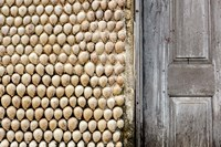 Cowrie shells on wall of building, Ibo Island, Morocco Fine Art Print