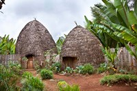 Dorze in the Guge Mountains, Ethiopia by Martin Zwick - various sizes