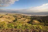 Dry farming on terraces, Konso, Rift valley, Ethiopia, Africa by Martin Zwick - various sizes