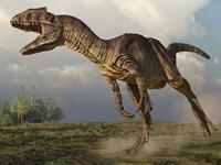 Allosaurus running in an open field Fine Art Print