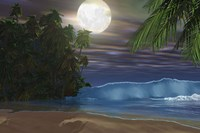Moonlight shines down on the beach during the night of a full moon by Corey Ford - various sizes
