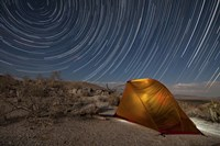 Star trails above a campsite in Anza Borrego Desert State Park, California Fine Art Print