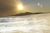 Two white doves fly over waves coming to shore on a remote beach by Corey Ford - various sizes