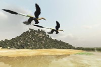 Two Microraptor dinosaurs fly over a wetland marsh in prehistoric times by Corey Ford - various sizes