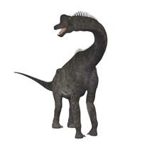 Brachiosaurus dinosaur Fine Art Print