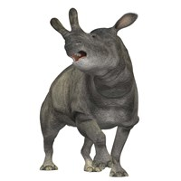 Brontotherium is a rhinocerous-like mammal by Corey Ford - various sizes, FulcrumGallery.com brand