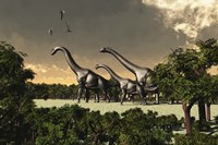 Brachiosaurus dinosaurs walk through a forested area by Corey Ford - various sizes