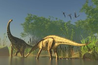 Spinophorosaurus dinosaurs grazing the inhabited swamps of the Jurassic period by Corey Ford - various sizes